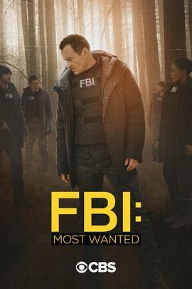 联邦调查局:通缉要犯第二季